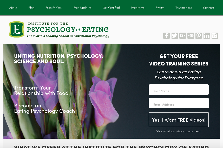 The Institute for the Psychology of Eating